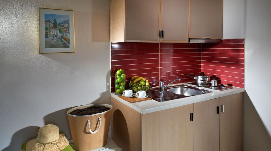 A Quadraple Plus Apartment's little kitchen